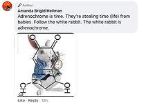 White rabbit over chemical compound.jpg
