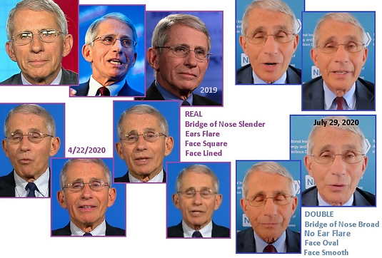 Fauci doubles.png
