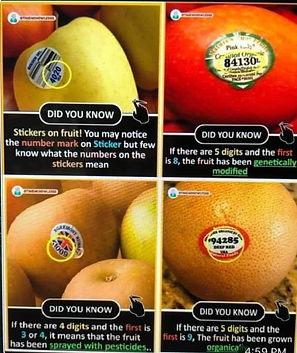 healing fruit stickers.jpg