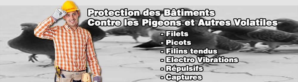 Protection-contre-les-pigeons