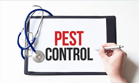 Nouveautés actualités du pest control