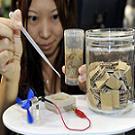 Le Termite créateur d'Energie : La batterie de Sony