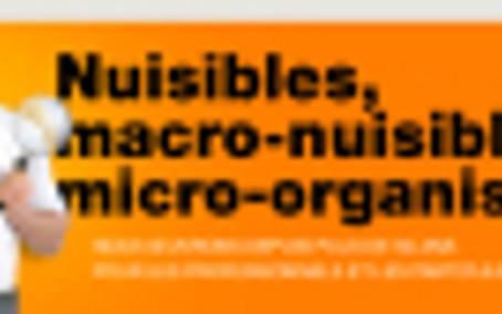 Les animaux nuisibles bientôt supprimés en France