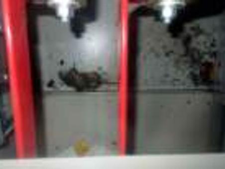 Grave panne d'électricité sur la centrale de Fukushima : un rat aurait provoqué un court circu