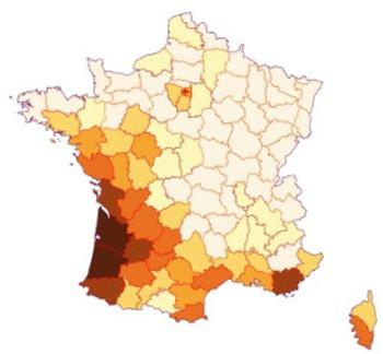 PARIS : Un vrai gruyère pour termites, un sujet est tabou.