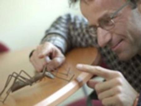 Biologie : Un gène dicte le comportement des fourmis de feu