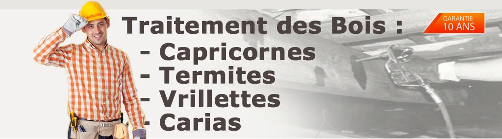 Traitement termites des bois sec