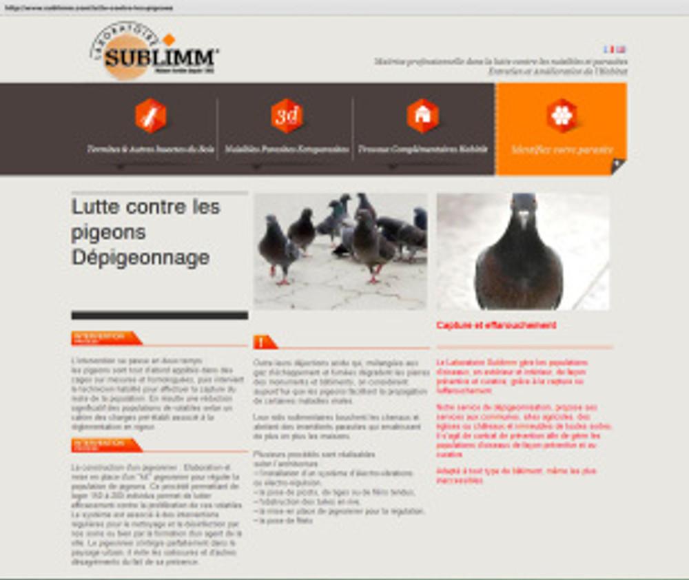 lutte régulation des pigeons