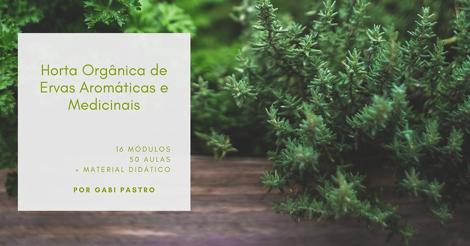 Horta Orgânica (2).png