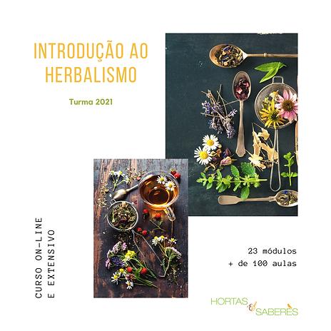 Cópia de Introdução ao Herbalismo on-lin