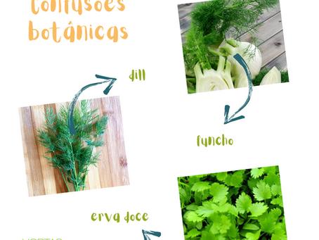 O que é funcho, dill e erva doce?