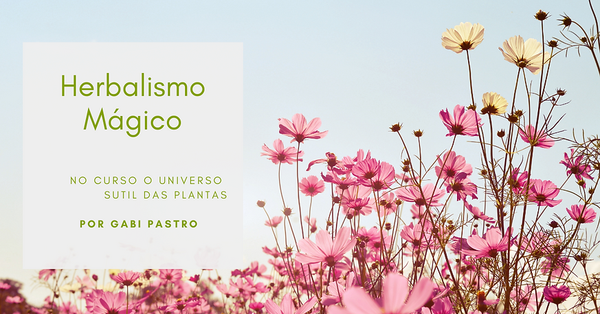 Universo Sutil das Plantas.png