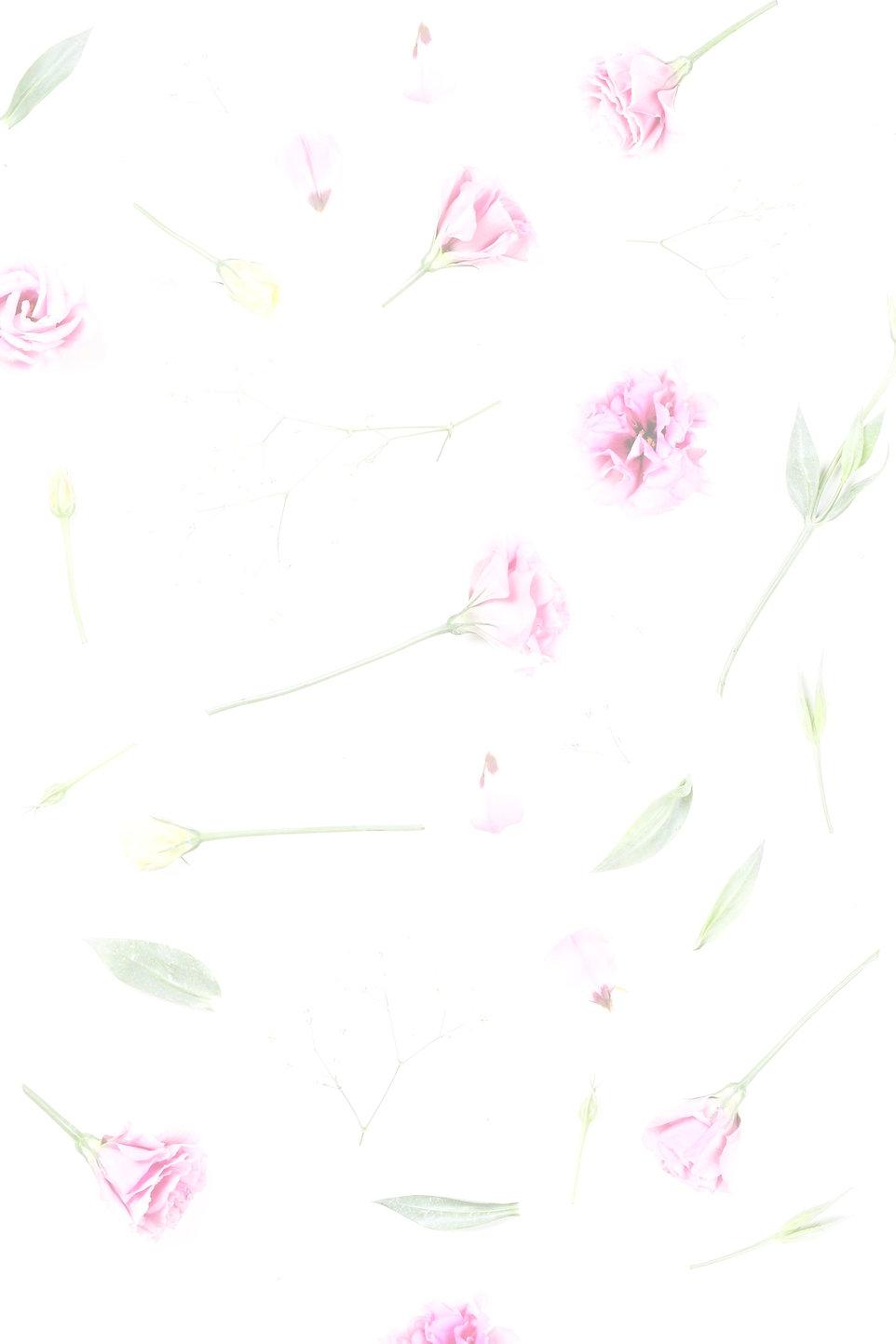 Pink%2520Roses_edited_edited.jpg