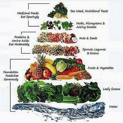 WHAT FOOD IS HEALTHY ?🤔 LEARN THE PLANT PASED FOOD PYRAMID !