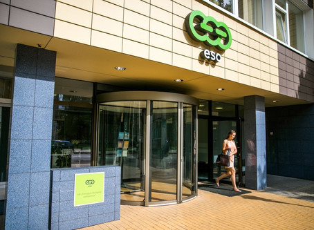 "The ""electrocuted"" shareholders of ESO: The Real Return of long-term investors"