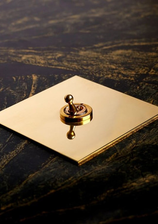Unlacquered brass dolly switch