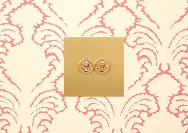 Double brushed brass dolly switch