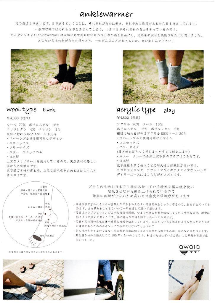 AW_ankl_fly_b.jpg