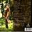 Thumbnail: BEAUTIFUL DAYS / ALVIN OKAMI