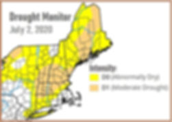 Drought Monitor July 2, 2020.jpg