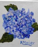 Hydrangea | $25