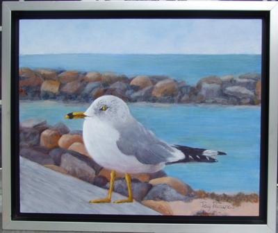 Gull of My Dreams  |  $195