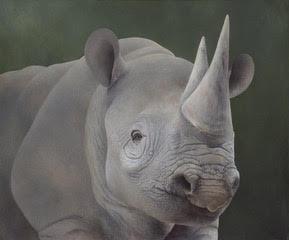 Black Rhino | $3500