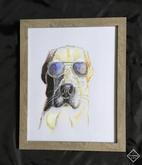 Dog Days Of Summer | $100