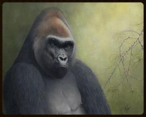 Crosscreek Gorilla | $2400
