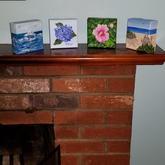 Mini Canvases   $25 each