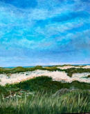 """Beautiful P'Town Dune"" |  $360"