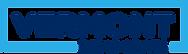 VDP Rectangle Logo - Royal Blue and Brig