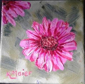 Echinacea | $25