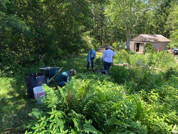 Working in the Alyce Favreau garden