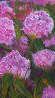 """""""The Cape Loves Rhodies"""" 