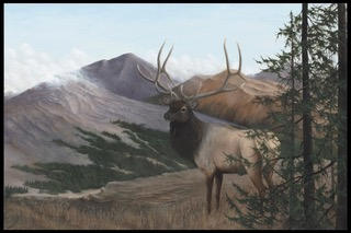 Elk on the Mountain | SOLD