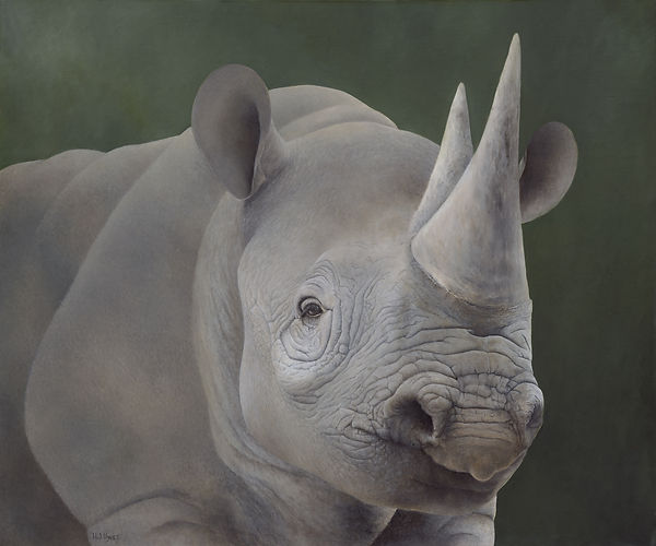 BLACK RHINO SMALL JPEG (1).jpg