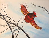 """Red Robin in Flight"" 