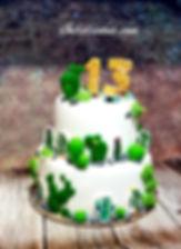 עוגת בר מצווה מעוצבת קקטוסים