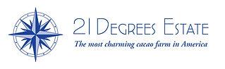 21-Degrees-Logo-blue2.jpg