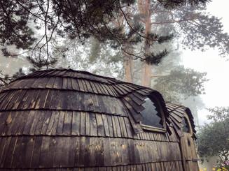 Rangi saun