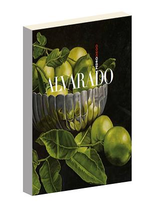 Pedro Diego Alvarado