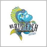 Mr Big Fish 2x2 - Participants.jpg