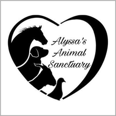 Alyssas 2x2 Gift Card 11_1_19.png