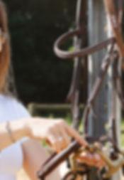 Trensen, Röntgenbild, mobiler Reitunterricht, Beritt, Pferdeausbildung, Freizeitpferd, Gymnastizierung, gesund reiten, Dehnugshaltung, Vorwärst abwärts, Dressurausbildung, Springgymnastik, Grundausbildung, Reitpferd, Longieren, Seitengänge, Traversale, Schulterherein, Volte, Hufschlagfiguren, klassisch, Balance, Gleichgewicht, Remonte, Versammlung, Dressur, Hohe Schule, Studium, Fachwissen, Kompetenz, trensen expertin, bachelor, vet.med. Universität
