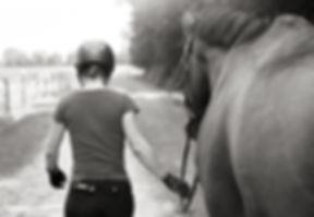 mobiler Reitunterricht, Beritt, Pferdeausbildung, Freizeitpferd, Gymnastizierung, gesund reiten, Dehnugshaltung, Vorwärst abwärts, Dressurausbildung, Springgymnastik, Grundausbildung, Reitpferd, Longieren, Seitengänge, Traversale, Schulterherein, Volte, Hufschlagfiguren, klassisch, Loben, erfolg, Harmonie