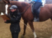 wissbegirige Schüler :) das Pferd lernt schonmal lesen...