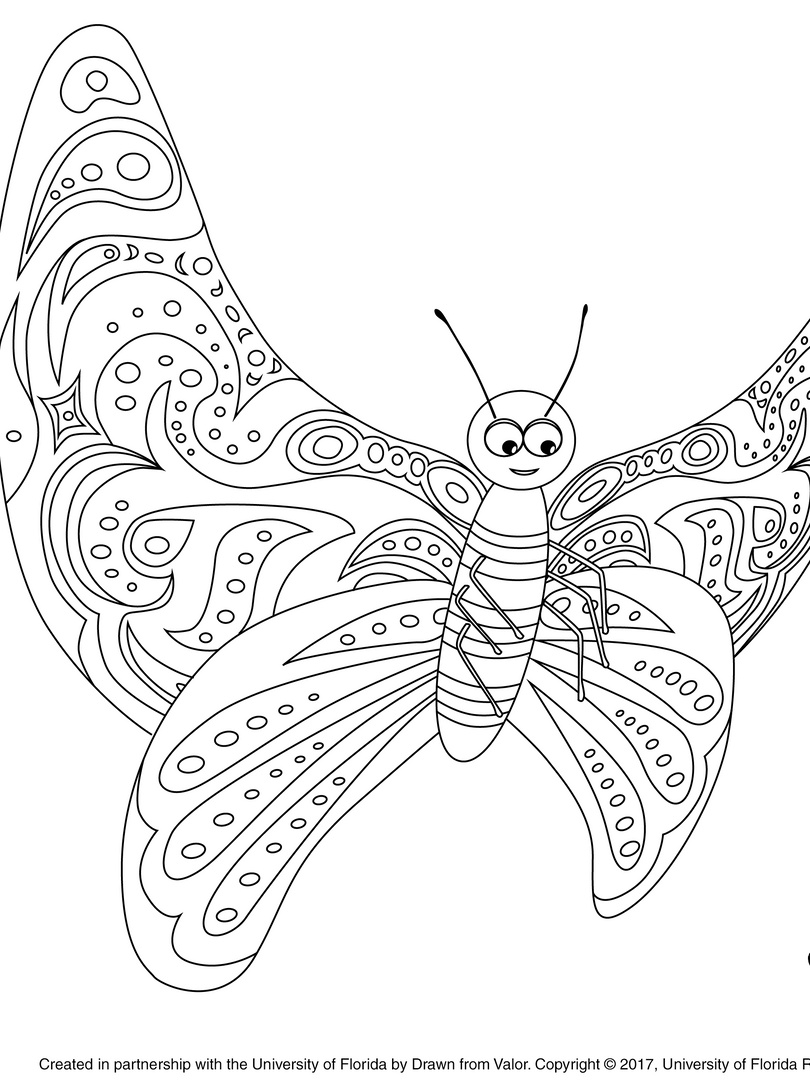 Coloring Book Art - Flyroid.png