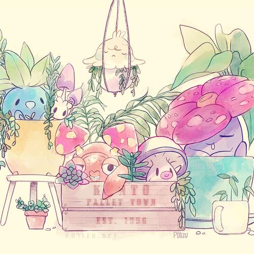 Pokemon Garder