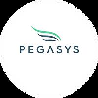 PegaSys2.png